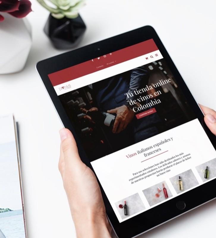 Creación de diseño sitios web catalogo